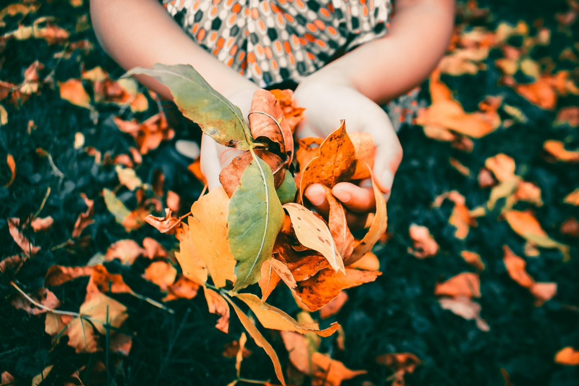 a girl with a handful of autumn leaves